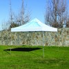 10x10 Tent Sky with Wind Flaps